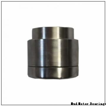 228/600Q Mud Motor Bearings