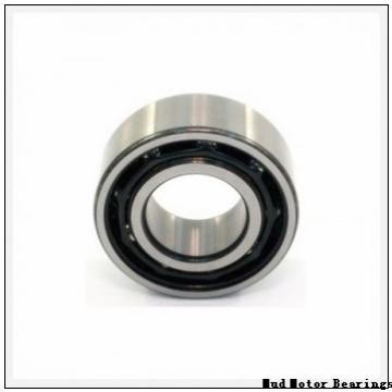 11118-RA Mud Motor Bearings