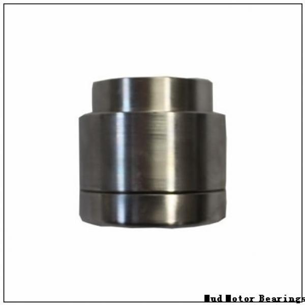 NAL 6034X2 M/C9W33X Mud Motor Bearings #2 image