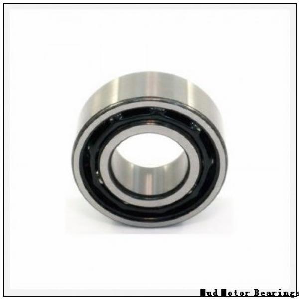 LZ95 Mud Motor Bearings #2 image