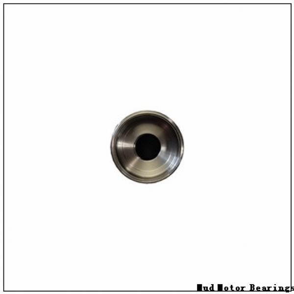 NAL 6034X2 M/C9W33X Mud Motor Bearings #1 image